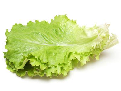 La feuille de salade qui a rapporte feuille de salade png - Dessin d une feuille ...