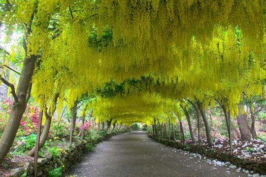 Les plus beaux jardins du monde - Les jardin d ulysse ...