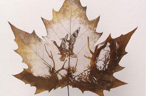 Dessins sur feuilles mortes - Dessin feuille morte ...