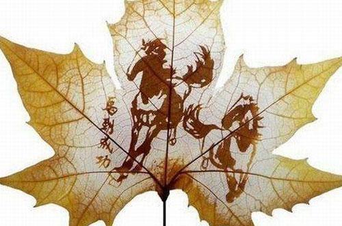 Dessins sur feuilles mortes page 2 - Dessin feuille morte ...